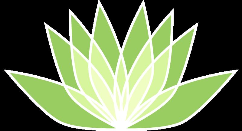 psychopraticien-bordeaux-jerome-legall-logo-fleur-lotus